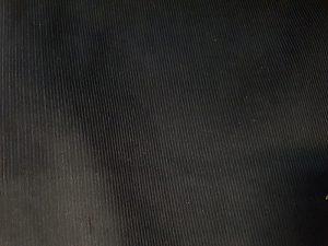Catifea raiata